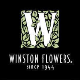 Winstons 2