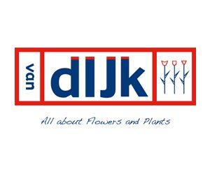 Logo Van Dijk Bloemen - afmeting website nieuwsbericht
